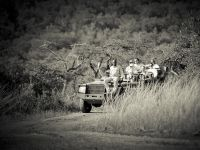 Laura-Simon-Wedding-Morning-Safari.jpg